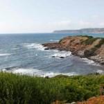 Proteggiamo tre preziose aree costiere in Italia